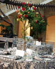 Party Rentals | Event Rentals | Special Event Rentals | Atlanta Georgia